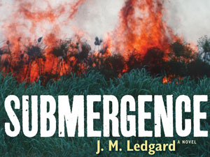 20130716_daily-circuit-jm-ledgard-submergence-book_2